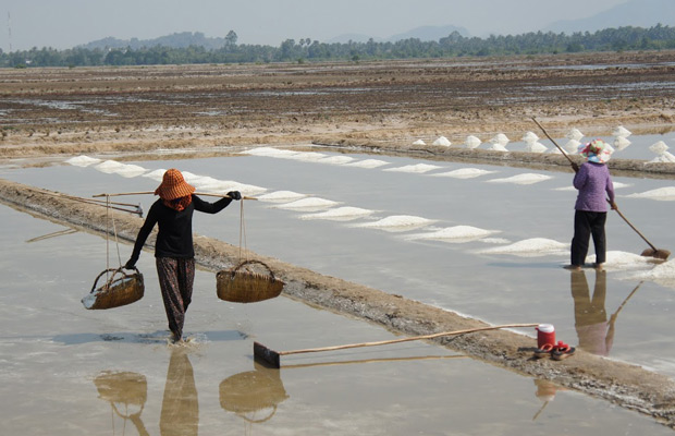 Salt Manufacturing Kep